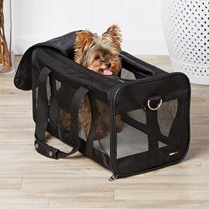 Hundebox für kleine Hunde